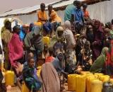 creditcateturtondid_refugees_crop.jpg
